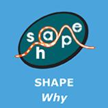 Shape Why 241115